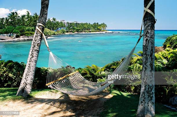Hawaii resort hotel beach side Pacific ocean front hammock