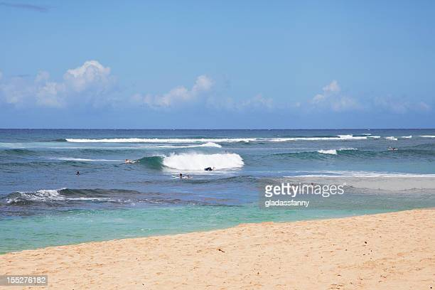 hawaii surf - image title stock pictures, royalty-free photos & images