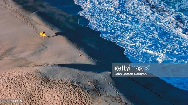 usa, hawaii, surfer at waimea bay - waimea bay stock pictures, royalty-free photos & images