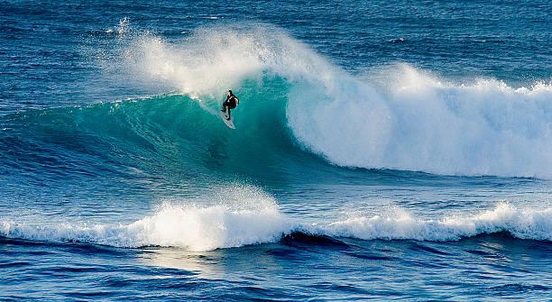 Hawaii surfer