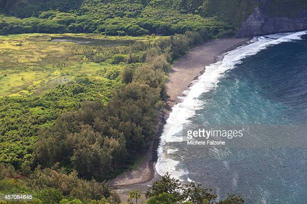 hawaii, waipio valley - waipio valley stockfoto's en -beelden