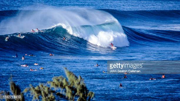 usa, hawaii, winter surfing at sunset beach - category:census-designated_places_in_honolulu_county,_hawaii stock pictures, royalty-free photos & images