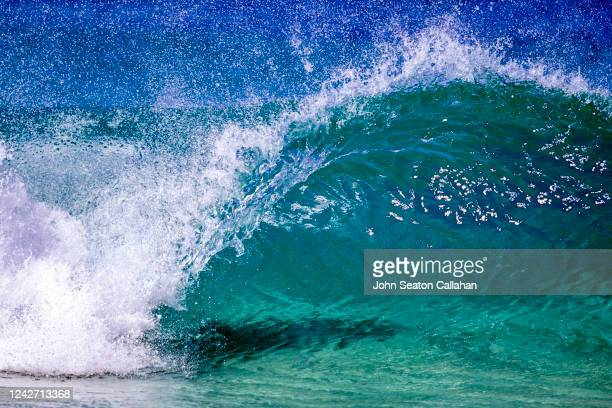 usa, hawaii, winter wave at ehukai beach park - category:census-designated_places_in_honolulu_county,_hawaii stock pictures, royalty-free photos & images