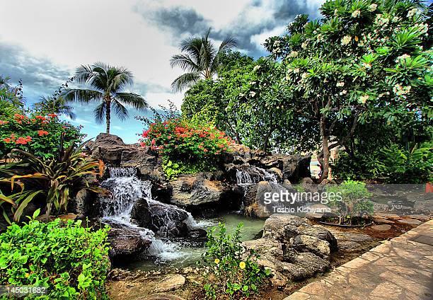 hawaiian garden - hawaiian waterfalls stock pictures, royalty-free photos & images