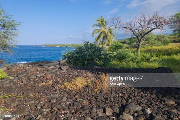 Hawaiian heiau (temple) on Ki'ilae Bay in Pu'uhonua o Honaunau NP in Hawaii