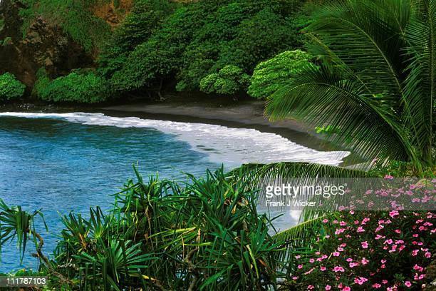 Hawaiian Islands Hamoa Beach 125