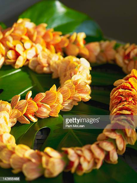 hawaiian lantern ilima flower lei - hawaiian lei stock pictures, royalty-free photos & images