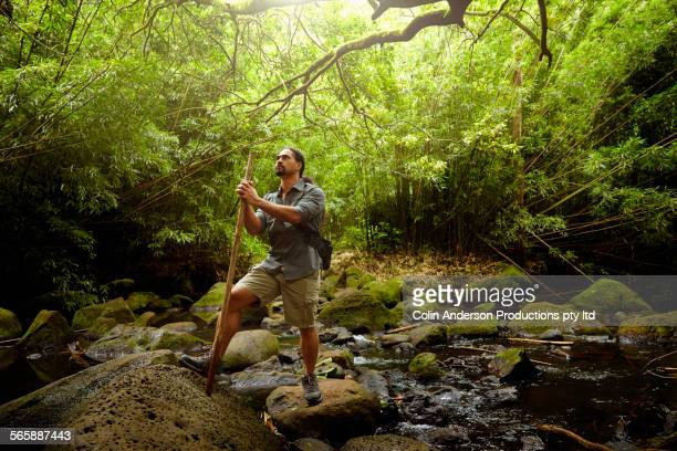 Hawaiian scientist doing field research in forest