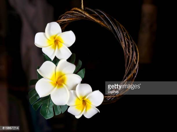 Hawaiian taste artificial flower wreath (Plumeria rubra)