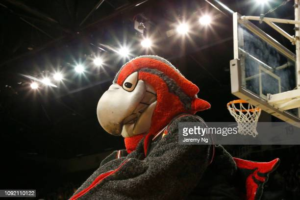 Hawk mascot is seen during the round 13 NBL match between the Illawarra Hawks and the Adelaide 36ers at Wollongong Entertainment Centre on January...