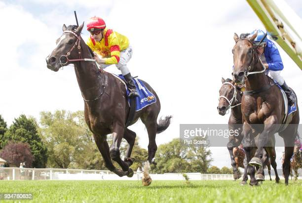 Hawkshot ridden by Mark Zahra wins the Magnum Equine 2YO Maiden Plate at SportsbetBallarat Racecourse on March 20 2018 in Ballarat Australia