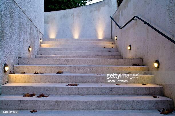 LED lighting in brass fixtures illuminate garden steps for safety.