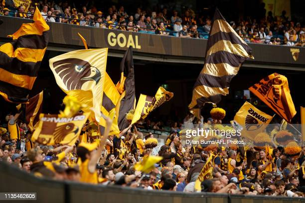Hawthorn supporters celebrate a goal during the 2019 AFL round 03 match between the Hawthorn Hawks and the North Melbourne Kangaroos at the Melbourne...