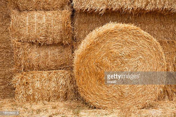 Hay backgrounds