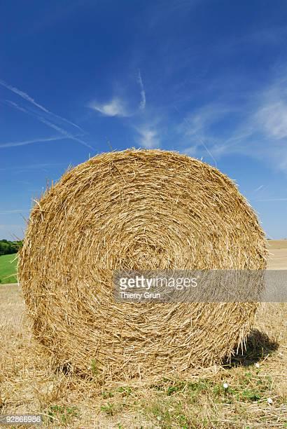 Hay bale in Lorraine region