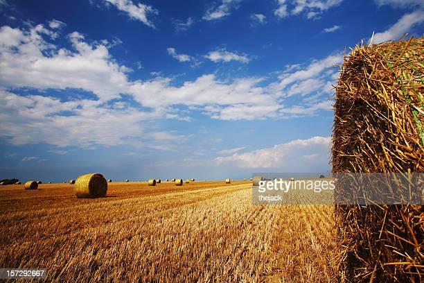 Hay Bale Landscape (high contrast version)