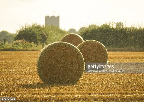 Hay Bale On Field