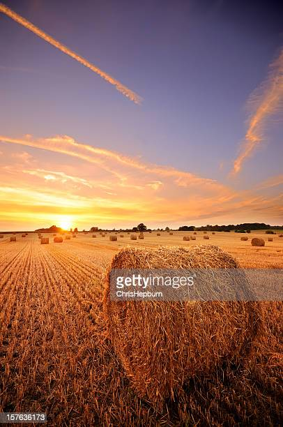 Hay Bale Sunset