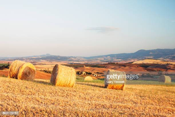 hay bales at harvest time in tuscany - yeowell foto e immagini stock