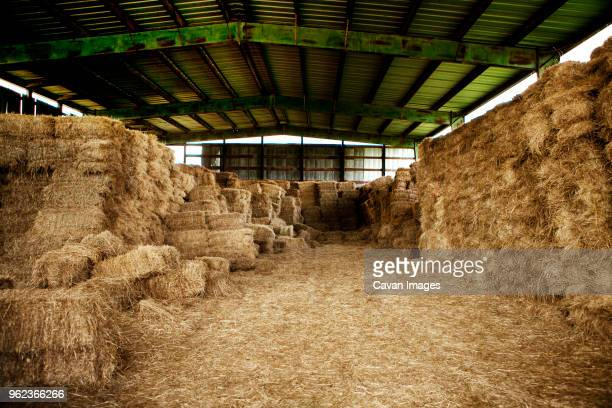 hay bales in barn - 納屋 ストックフォトと画像