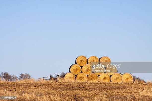 hay bales in farm - ryan mcginnis stock photos and pictures