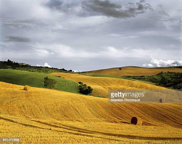 Hay bales in field near Monticchiello