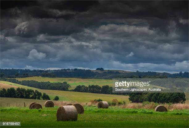 Hay bales in the fields, Welshpool, South Gippsland