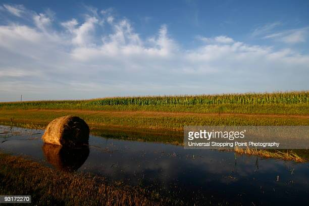 hay bales in water - north dakota stock pictures, royalty-free photos & images