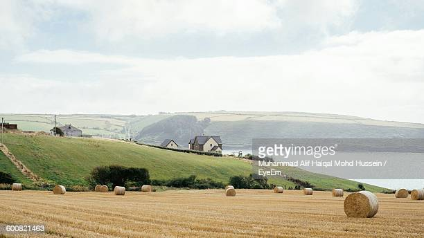 hay bales on agricultural field against sky - county cork stock pictures, royalty-free photos & images