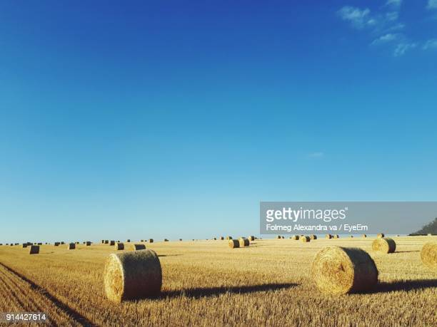 Hay Bales On Field Against Clear Blue Sky
