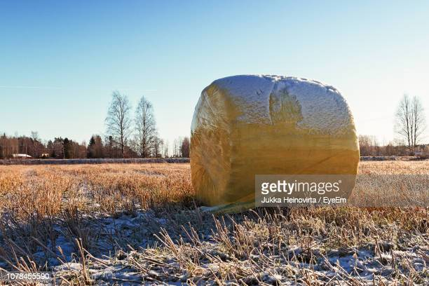 hay bales on field against clear sky during winter - heinovirta stock photos and pictures