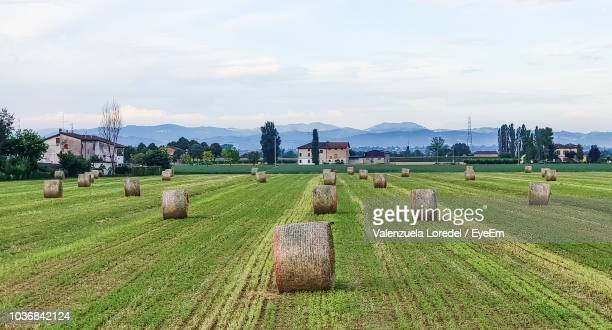 hay bales on field against sky - reggio emilia stock pictures, royalty-free photos & images