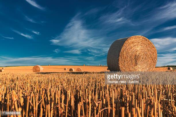 hay bales on field against sky - territory stock pictures, royalty-free photos & images