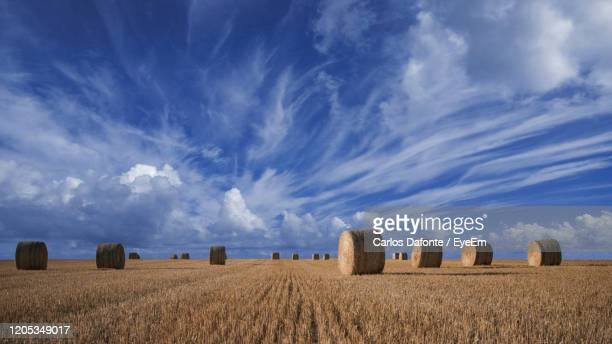 hay bales on field against sky - wide angle stock pictures, royalty-free photos & images