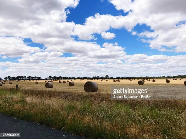 hay bales on field against sky - bendigo stock pictures, royalty-free photos & images