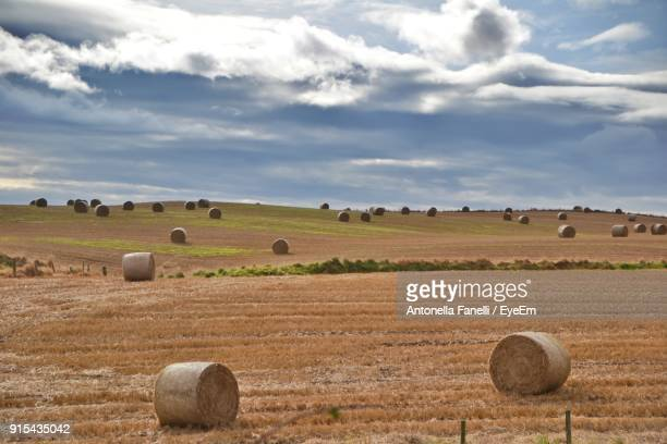 hay bales on field against sky - antonella stock photos and pictures