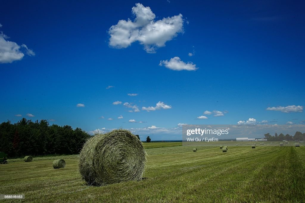 Hay Bales On Grassy Field Against Sky : Stock Photo