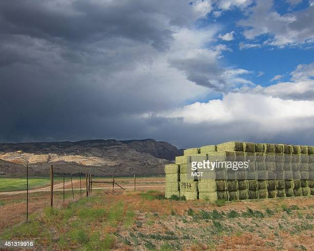 Hay bales rest in a field at the Escalante Ranch a 22000 ranch in northeast Utah owned by a Chinese company that supplies alfalfa to China's dairy...