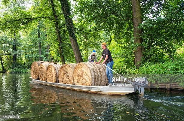 Hay bales Transfer in die Spreewald