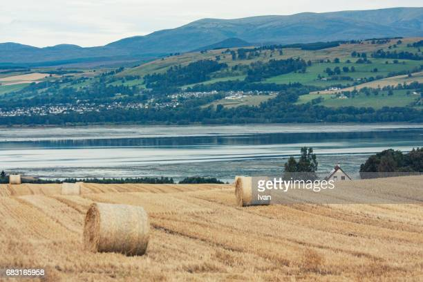 hay bales with lake and farmhouse in the background, scotland, uk - northern europe stock pictures, royalty-free photos & images