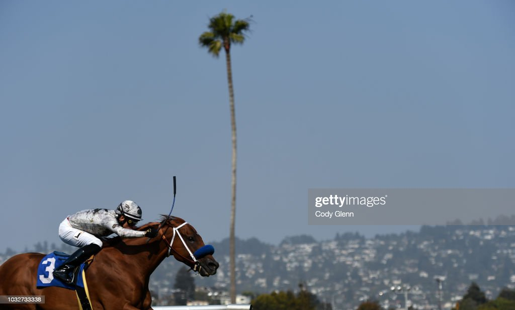 Summer Races at Golden Gate Fields : News Photo