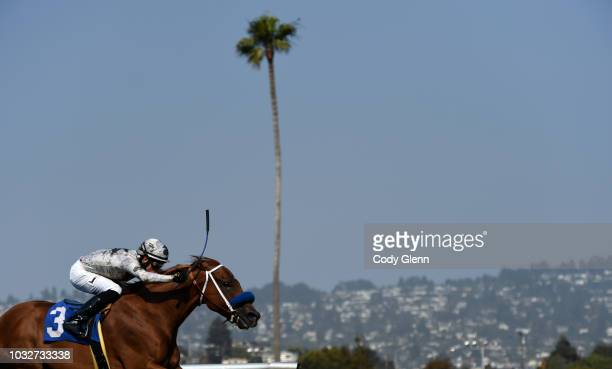Hay Dude with Irving Orozco up on their way to winning the 5th Race during Summer Races at Golden Gate Fields on Sunday September 2 2018 in Berkeley...