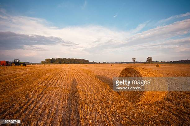 hay field with bale and tractor - オンタリオ州 ロンドン ストックフォトと画像