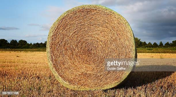 Hay Rollup