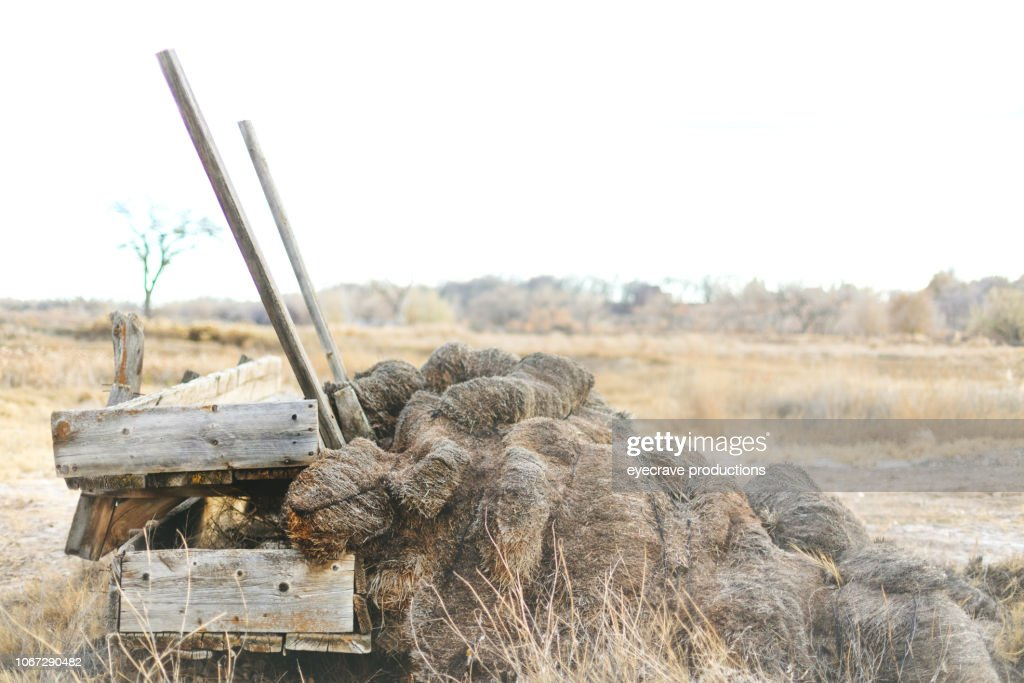 Hay Stack and Wooden Feed Mangers Rural Backgrounds and Surfaces and Outdoor Textures Western Colorado : Stock Photo
