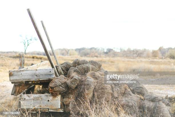 hay stack and wooden feed mangers rural backgrounds and surfaces and outdoor textures western colorado - trough stock photos and pictures