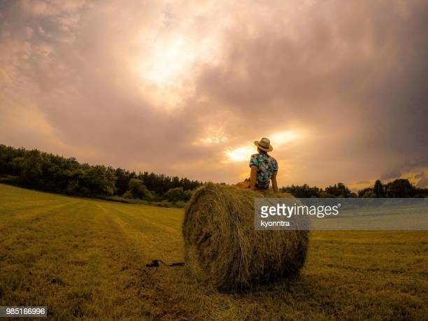 hay stack in japan - aomori prefecture stock pictures, royalty-free photos & images