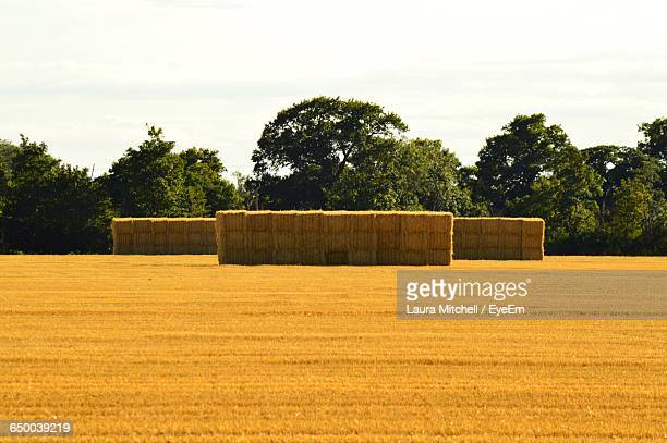 Hay Stacks On Field Against Sky During Sunny Day