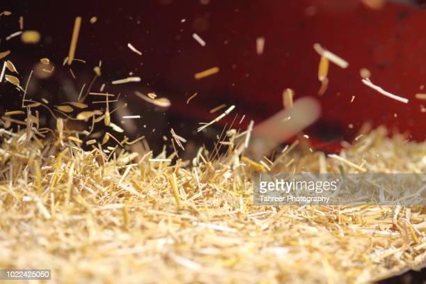 hay straw coming out of threshing machine - heno fotografías e imágenes de stock