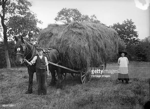 A hay waggon near Hellidon Northamptonshire c1896c1920 A loaded hay waggon in a field with a farm labourer holding the reins of the horse while a...